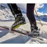 Chaussure Ski de rando Alien 1.0 Carbon Scarpa F19-20